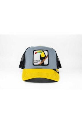 Goorin Bros Unisex Gri Standart Şapka