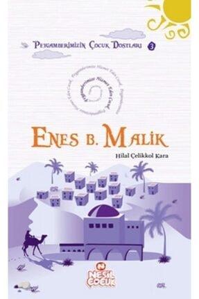 Enes Bin Malik 455188