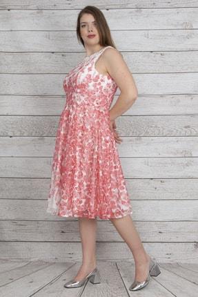 Şans Kadın Nar Arka Fermuarlı Astarlı Dantel Elbise 65N23179
