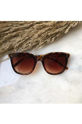 Di Caprio Kadın Kahverengi Alanzo Kadın Güneş Gözlüğü
