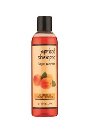 Hunca Kayısılı Şampuan 350 ml