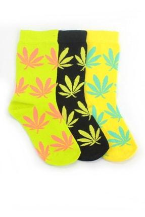 Hane14 Yaprak Desenli Pamuklu Soket Bayan Çorabı Neon Yeşil Siyah Sarı 3'lü Paket