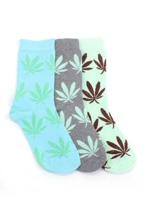Hane14 Yaprak Desenli Pamuklu Soket Bayan Çorabı Neon Mavi Gri Yeşil 3'lü Paket