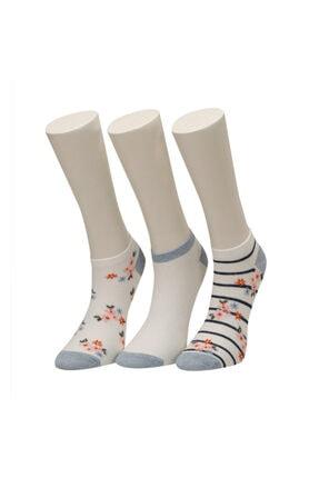 Missf Seul 3 Lü Ptk-w Mavı Multı Kadın Çorap