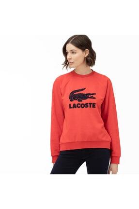 Lacoste Kadın Bisiklet Yaka Baskılı Kırmızı Sweatshirt SF5640