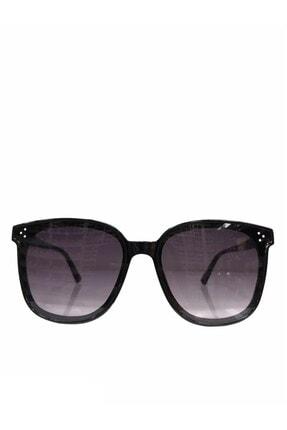 Almera Kadın Siyah Organik Camlı Güneş Gözlüğü/59