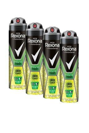 Rexona Men Limon Ferahlığı 150 Ml Deodorant X4