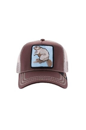 Goorin Bros Unisex Kahverengi Beaver Şapka