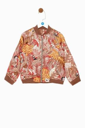 B&G Store Erkek Çocuk Desenli Ceket