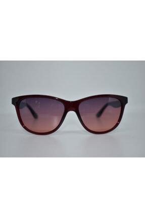 Swing  Kadın Güneş Gözlüğü Ss265 C49