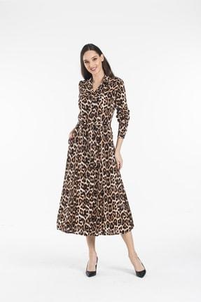 Pitti Kadın Leopar Elbise 51103