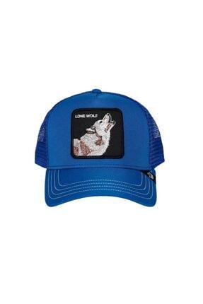 Goorin Bros Unisex Mavi Kurt Baskılı Şapka