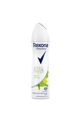 Rexona Stay Fresh Aloe Vera & Bamboo Kadın Sprey Deodorant 150 ml