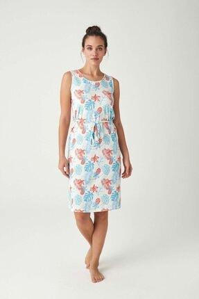 Mod Collection Kadın Mavi Elbise