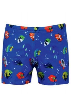 Kom Mavi Balık Desenli Erkek Çocuk Mayo