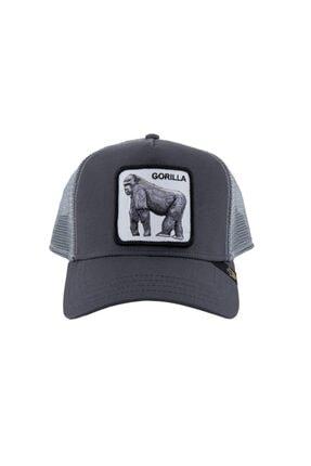 Goorin Bros Şapka - King Of The Jungle