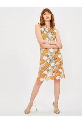 Vekem Kadın Vizon Kolsuz Yuvarlak Yaka Dantel Elbise