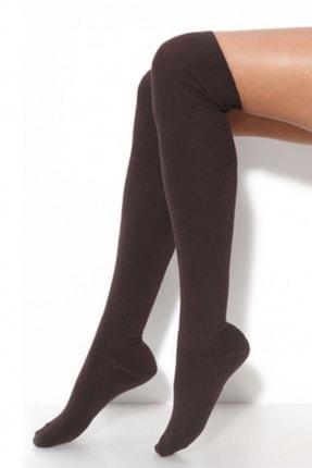 Hane14 Kadın Kahverengi Diz Üstü Koton Çorap Kahverengi