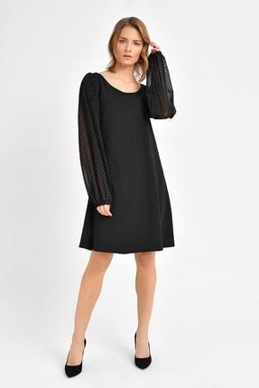 Quincey Puantiye Tül Kollu Elbise  Siyah EBT2749