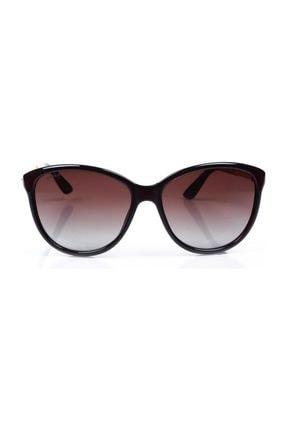 HAWK Kadın Oval Güneş Gözlüğü Hw 1784 02